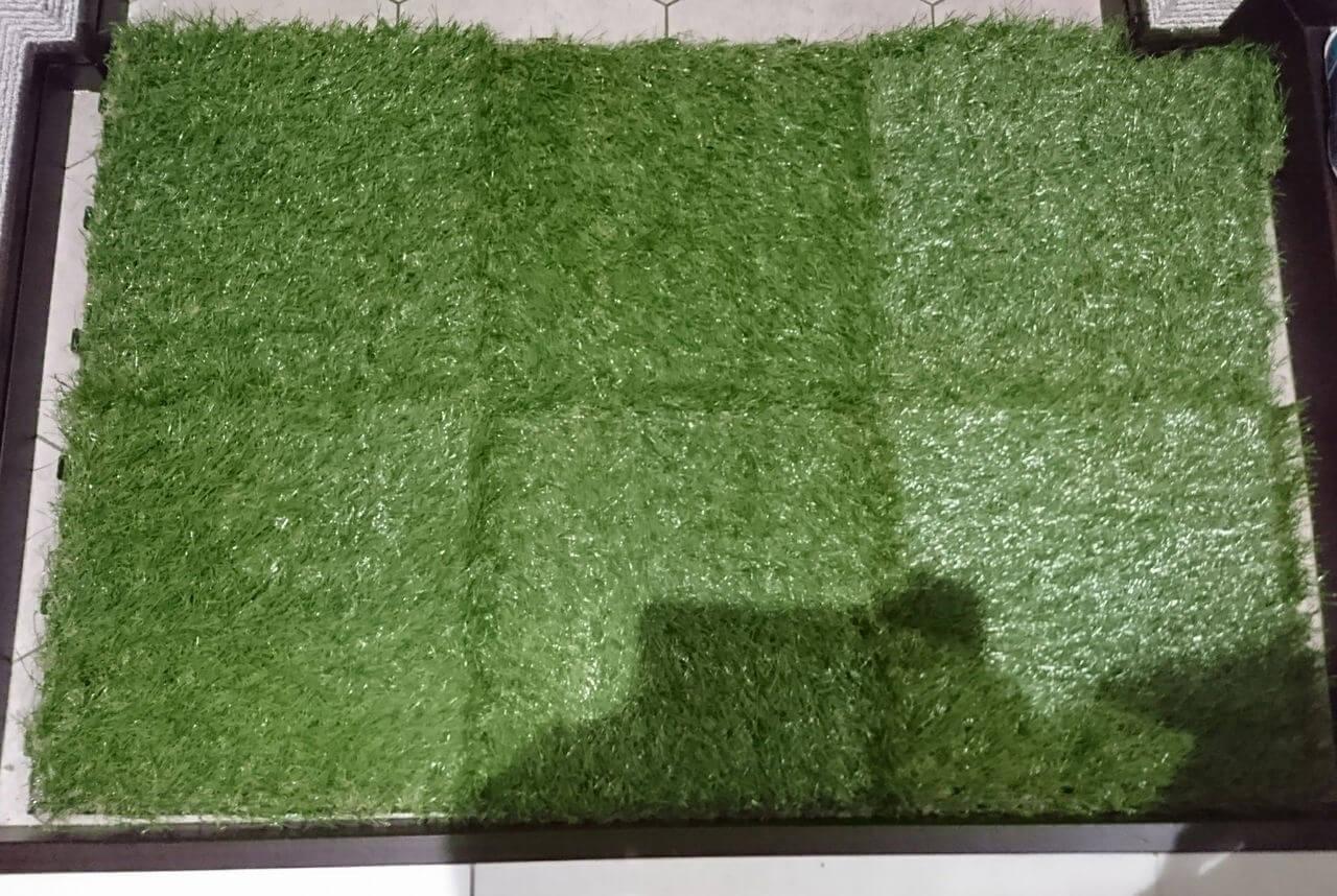 若干...端っこが足りないニトリの芝生マットの日記イメージ写真